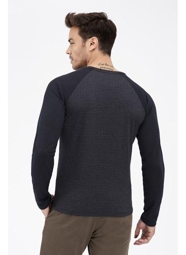 Sweatshirt-Avva